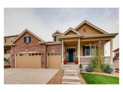 Plum Creek, Plum Creek Fairway, Plum Creek South Single Family Home Active: 2614 Dublin Drive