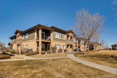 Longmont Condo/Townhouse Under Contract: 1138 Olympia Avenue #14H