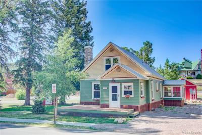 Steamboat Springs Single Family Home Active: 228 Logan Avenue