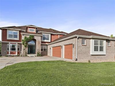 Castle Rock CO Single Family Home Active: $675,000