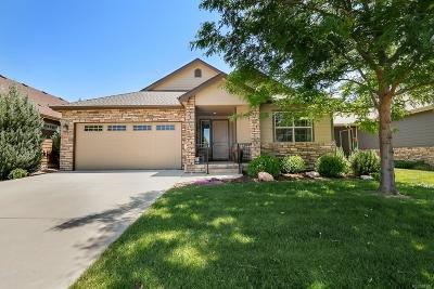 Loveland Single Family Home Active: 3192 Crooked Wash Drive