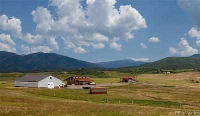 Steamboat Springs Single Family Home Active: 29622 County Road 14