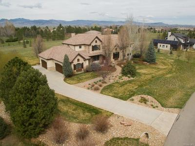 Longmont Single Family Home Active: 8649 Portico Lane