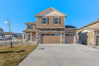 Castle Rock Single Family Home Active: 2049 Shadow Rider Circle