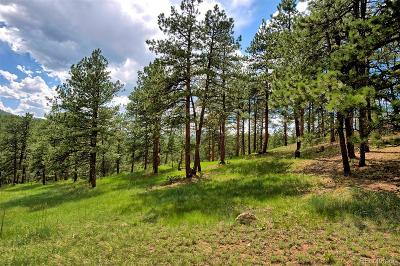 Morrison Residential Lots & Land Active: 8213 Stags Leap Trail