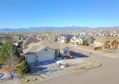 Colorado Springs Single Family Home Active: 5706 Dusty Chaps Drive