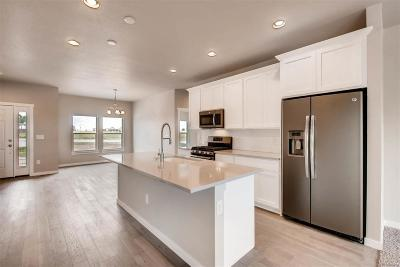 Hudson Single Family Home Under Contract: 460 Wyatt Drive