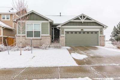 Aurora Single Family Home Active: 24689 East Brandt Avenue