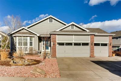 Castle Rock Single Family Home Active: 1635 Marsh Hawk Circle