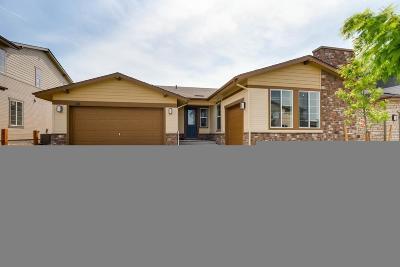 Erie Single Family Home Active: 186 Horizon Avenue