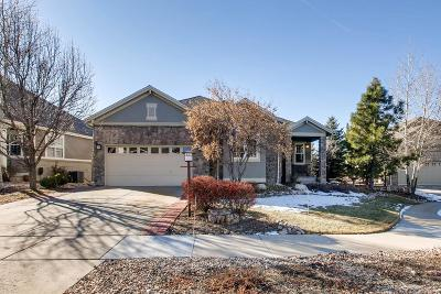 Aurora Single Family Home Under Contract: 8169 South Valdai Court