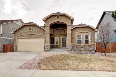 Colorado Springs Single Family Home Under Contract: 7513 Talus Ridge Drive