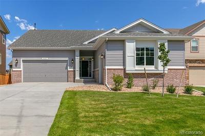Arvada Single Family Home Active: 8753 Crestone Street