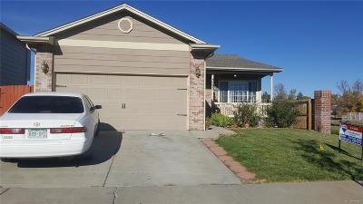 Denver Single Family Home Active: 5095 Crystal Way