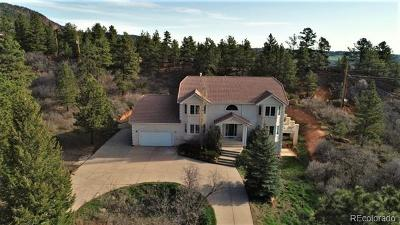 Monument Single Family Home Active: 4850 Sandstone Drive