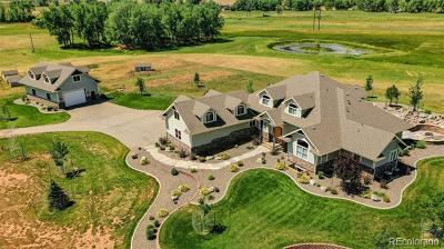 Loveland Single Family Home Active: 943 North County Road 29
