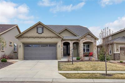 Colorado Springs Single Family Home Under Contract: 9131 Lizard Rock Trail