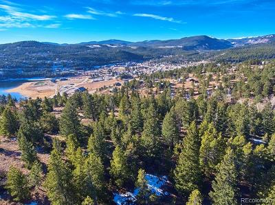 Nederland Single Family Home Active: 71 Stinky Gulch Road