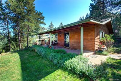 Evergreen Single Family Home Active: 27972 Camel Heights Circle
