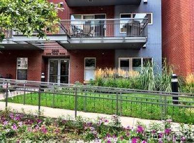 Denver Condo/Townhouse Active: 1440 Little Raven Street #210