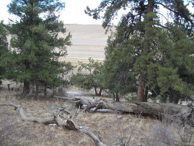 Fairplay CO Residential Lots & Land Active: $16,750