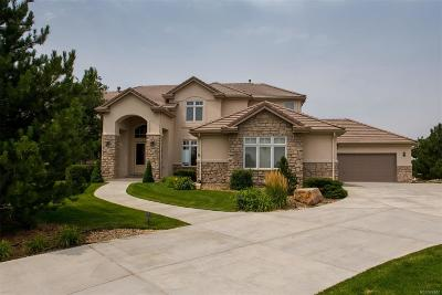 Castle Rock Single Family Home Active: 500 Sapphire Drive