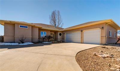 Loveland Single Family Home Under Contract: 3919 Hammans Court