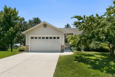 Longmont Condo/Townhouse Active: 955 Hover Ridge Circle #45