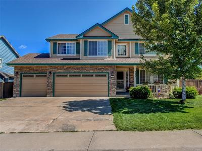 Castle Rock Single Family Home Active: 4998 Comanche Creek Way