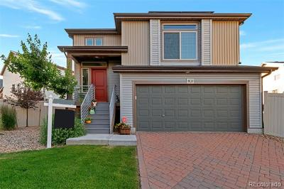 Denver Single Family Home Active: 4833 Halifax Court
