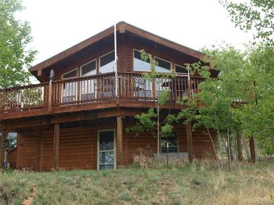 Park County Single Family Home Active: 1033 Kite Court