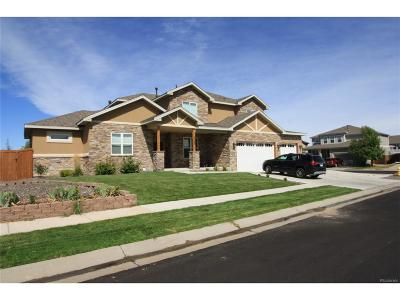 Brighton Single Family Home Active: 4755 Tumbleweed Drive