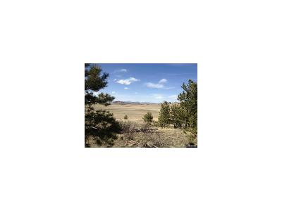 Park County Residential Lots & Land Under Contract: 4300 Commanche Trail
