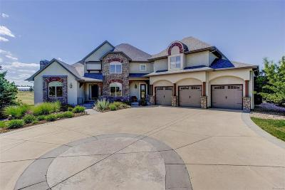 Parker Single Family Home Active: 11724 Bell Cross Circle