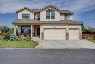 Golden Single Family Home Active: 5029 Gladiola Way