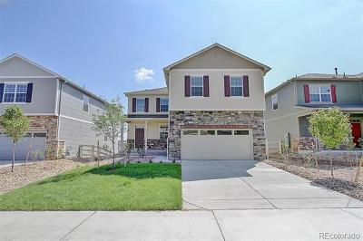 Castle Rock Single Family Home Active: 5961 Point Rider Circle