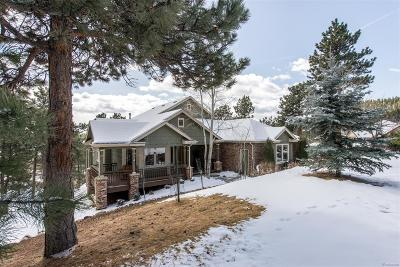 Evergreen Single Family Home Under Contract: 30276 Telluride Lane