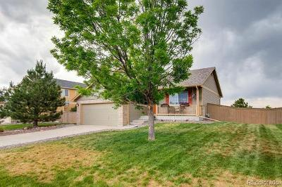 Castle Rock Single Family Home Under Contract: 5069 Eckert Circle