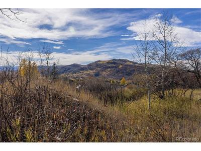 Steamboat Springs Residential Lots & Land Active: 340 Steamboat Boulevard