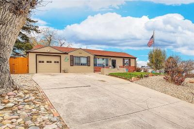 Denver Single Family Home Active: 711 South Osage Street
