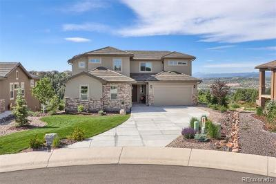 Castle Rock Single Family Home Active: 250 Andromeda Lane