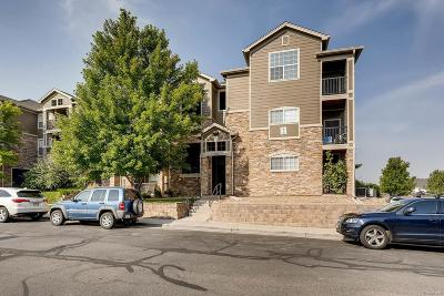 Erie Condo/Townhouse Under Contract: 2800 Blue Sky Circle #2-307