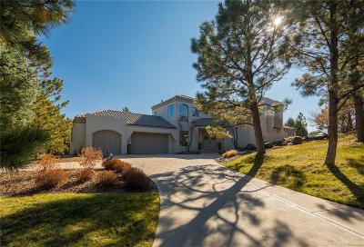 Castle Rock Single Family Home Active: 231 Lead King Drive