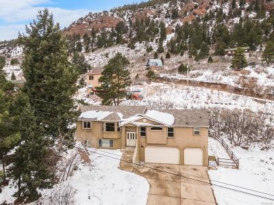 Palmer Lake Single Family Home Active: 366 Hoover Lane