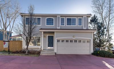 Highlands Ranch Single Family Home Under Contract: 1177 Laurenwood Way
