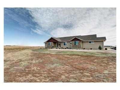 Single Family Home Sold: 26800 County Road 5