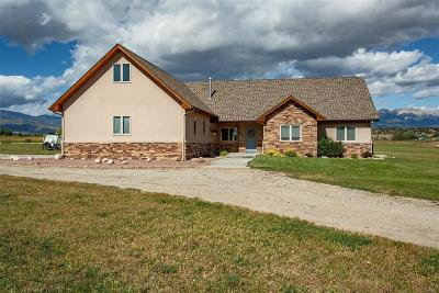 Salida CO Single Family Home Active: $699,900