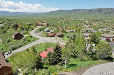 Residential Lots & Land Active: 2980 Alpenglow Way