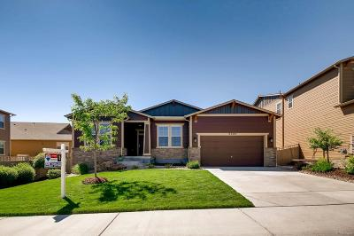 Castle Rock Single Family Home Under Contract: 4385 Manorbrier Circle