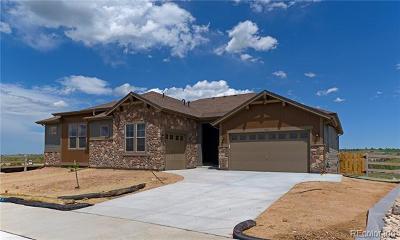 Littleton Single Family Home Active: 7955 Piney River Avenue